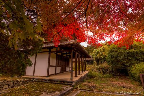 Tokoji Temple Hagi Yamaguchi Japan