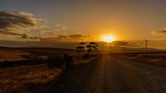 Sunset (hjuengst) Tags: overberg southafrica südafrika sunset sonnenuntergang sunbeam sunrays sonnenstrahlen wolken clouds gravelroad dirtroad schotterstrasse bredasdorp