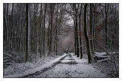 gebietsweise Schneefall