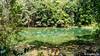 Green is the colour (Lцdо\/іс) Tags: lцdоіс thailande thailand emerald pool krabi thailandia thaïlande nature