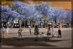 Fantàstiques Bombolles (Ar@lee) Tags: barcelona catalunya labarceloneta burbujas etereo niños azul escaleras airelibre blue bordeparafotos colours d50 espectrecomplet exteriors fullspectrum fotografíainfrarroja filtre680 ir nikond50 photographyinfrared streetphotography trees violeta