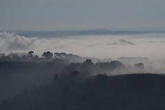 IMGP6446 (superpagliaccio) Tags: sicilia caltagirone piana nuvole nebbia landschaft landscape mattino bruma