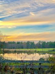 Golden Hour Reflection (Scorpiol13) Tags: goldenhour sunset horizon skyline light grass green massachusetts newengland outdoors reflection pond water farm farmland trees fall autumn nature landscape