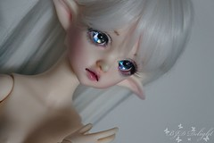 DIM Flowne (Steffi♥Dollies) Tags: bjd msd dim doll mind flowne hybrid leaves dollleaves