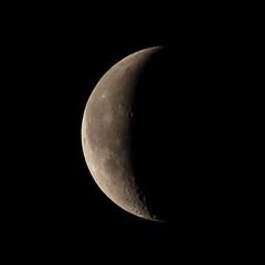 20171113_IMG_4348-trm (NAMARA EXPRESS) Tags: astronomy moon luna age241 satellite universe space star nature night tripod autumn fine outdoor color toyonaka osaka japan canon eos 7d tamron sp 70300mm f456 zoom namaraexp