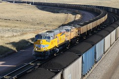 UP Tier 4 leads in the afternoon sun (kschmidt626) Tags: powder river wyoming union pacific bnsf burlington coal train c