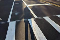 untitled by wide open source - www.instagram.com/wideopensource/