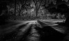 Calling of the Spirit in the Darkness (JDS Fine Art Photography) Tags: night spooky darkness shadows loght illumination haunting haunted spirit goth gothic chilling chiller street hauntedstreet road bw monochrome