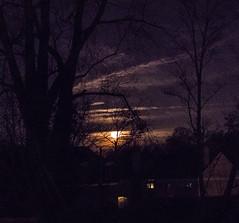 IMG_6897.jpg (lecgahannaphotos) Tags: moon clouds spooky predawn fullmoon scudding night astronomy tree