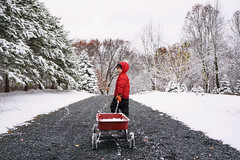 Snow removal? (Elizabeth Sallee Bauer) Tags: christmas nature active boy child childhood cold festive fun kid outdoors outside playing snow white winter