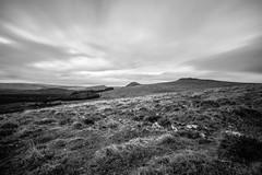 Moorland (NikNak Allen) Tags: devon dartmoor moor moors grass grasses tor tors trees wood view look sky clouds early morning land scape black white grey longexposure blackandwhite light shadows