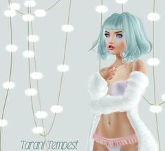 Some Fave Things :) (Tarani Tempest) Tags: secondlife shinystuffs pumec lamb vision cynful maitreya catwa