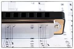 Harmonic Harmonica (Inky-NL) Tags: macromondays harmonica musicinstrument instrument music hmm macro notes mondharmonica happymacromondays fujixt2 fuji60mmf24 reflection ingridsiemons©2017 memberschoice mm musical instruments musicalinstruments