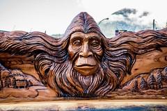 DSC_7981 (Copy) (pandjt) Tags: hope hopebc britishcolumbia sasquatch bigfoot carving carvings chainsawcarving sculpture publicart artwalk hopeartwalk woodcarving artwork