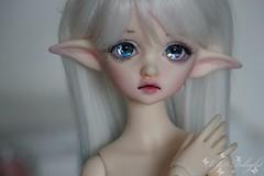 DIM Flowne (Steffi♥Dollies) Tags: bjd msd dim doll mind flowne hybrid leaves dollleaves