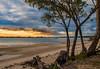 Glasshouse Mountains from Banksia Beach_ (Antony Allison) Tags: birds bribieisland lorikeets