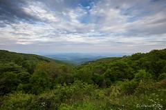 Endless Mountains 1698 (Ursula in Aus) Tags: blueridgeheritagearea blueridgemountains blueridgeparkway usa nc virginia