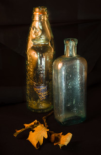 an old leaf & some older bottles- a still life exercise at the camera club