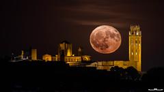 La Luna y la Seu (www.jorgelazaro.es) Tags: lleida catalunya españa es