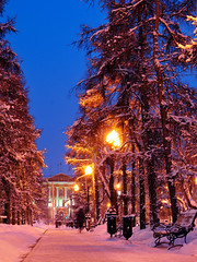 Evening alley (goldnboy.russia) Tags: evening blue sky snow trees alley bench building