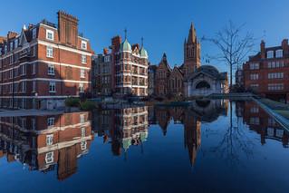 Brown Hart Gardens Reflection
