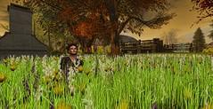 (Piper Pollemis) Tags: sl secondlife virtualworld virtual digitalart digital maitreya catwa lamb ds sensualmagic