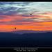 Balloon Ride - High Atlas