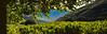 Under the Tree (Giovanni C.) Tags: escan01688 film panoramic greece analog fuji panorama pano 6x17 617 wide ultrawide analogue g617 landscape mediumformat mf nohdr nature gcap giovannic hellas griechenland ελλάσ ελλάδα grecia europe scenic saveearth filmisnotdead lovefilm 120 220 v700 epson scanner scanning fujica fujifilm 160ns negative