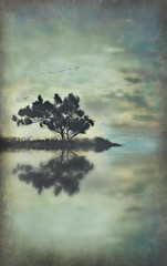 A Short Poem (Christina's World aka Chrissie Bee) Tags: water waterscene reflection artistic autumn birds flying tree creative california clouds landscape vintage