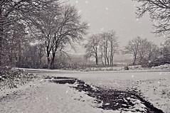 Der Anfang war gemacht... (Uli He - Fotofee) Tags: ulrike ulrikehe uli ulihe ulrikehergert hergert fotofee nikon nikond90 november schnee ersterschnee winter