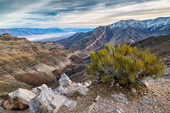 Pete's View (Kirk Lougheed) Tags: aguereberry aguereberrypoint california deathvalley deathvalleynationalpark mormontea usa unitedstates ephedra landscape nationalpark outdoor park plant