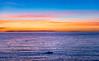 Golden Sunset (AMaleki) Tags: 2017 beauty bluehour california colors lagunabeach nature nikond600 november ocean orangecounty pacificocean seascape sky skyline sunset