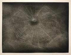 Vija Celmins (rocor) Tags: vijacelmins geminigel spiderwebs