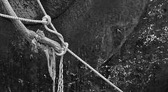 (trailrunner55) Tags: seattle washington usa fishing vessel rope rust knot pacificnorthwest boat blackandwhite