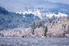 Titisee (Che Camera) Tags: schnee schwarzwald see sonyalpha6300 teamsony titisee wasser winter blackforest lake snow water titiseeneustadt badenwürttemberg deutschland de ilce6300