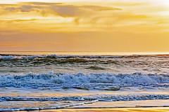Lumière du soir sur l'océan (Ciceruacchio) Tags: lumière light luce soir evening sera ocean oceano mer mare sea or oro gold vague wave onde atlanticcoast côteatlantique costaatlantica littoral rivage nouvelleaquitaine aquitania gironde france francia frankreich nikond750