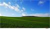 quiet (Lutz Koch) Tags: idsteinerland field sky green ruhig calm quiet idstein taunus hessen hesse germany elkaypics lutzkoch acker feld grün himmel wolken minimal minimalismus ruhe calmness silence peace frieden