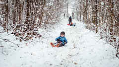 Wintertime (I.Dostál) Tags: winter outdoor sledge kids child children wood snow race donwhill hill happy fun free time