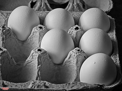 Healthy Start (MBates Foto) Tags: ambientlight availablelight blackandwhite breakfast culinary diet dietary eggs existinglight food hdr health indoors monochrome nikkorlense nikon nikond810 poultry stilllife spokane washington unitedstates 99203
