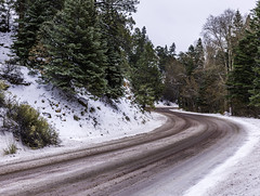 Hyde Park Road In Snow (Mabry Campbell) Tags: 2016 december h5d50c hasselblad hydeparkroad newmexico santafe usa unitedstatesofamerica cold commercialphotography curve fineart fineartphotography highway image landscape photo photograph photographer photography road roadscape snow snowing trees winter f63 mabrycampbell may 2017 may252017 20170525campbellb0001408 80mm 04sec 100 hc80