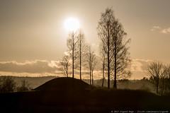 Iron Age Mound (Sigurd R) Tags: afternoon akershus asker barrow burialmound church gravhaug historical ironage jernalder kirke norge norway silhouette sun trees viking no