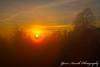 Mission missing mist not messed up (Yarin Asanth) Tags: atmospheric volcano hill singen hohentwiel castle mist fog autumn trees orange red sunset sundown fairytale yarinasanth gerdkozik yarinasanthphotography gerdkozikphotography gerdkozikfotografie gerdmichaelkozik