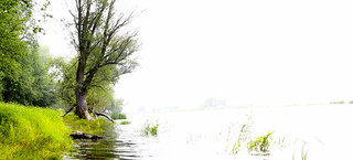 170817-5632-46 _Oderbruch_SOOC1_Pano_PS_