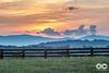 August 21, 2017IMG_0269Setup_Sunsets_ViewsCamden Littleton Photography 2017 (locknfestival) Tags: lockn family friends is for lovers virginia arrington infinity downs sunset sunrise