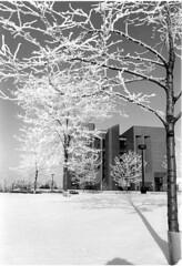 cofrin-library-winter-020