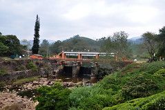 India - Kerala - Munnar - Landscape - 249 (asienman) Tags: india kerala munnar landscape asienmanphotography