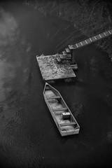 L'attracco 2 (drugodragodiego) Tags: monticellidoglio verolavecchia provinciadibrescia lombardia italy fiumeoglio oglio river barca boat water blackandwhite blackwhite bw biancoenero pentax pentaxk1 k1 pentaxdfa2470mmf28 hdpentaxdfa2470mmf28edsdmwr pentaxiani