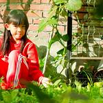 IMG_27491 thumbnail