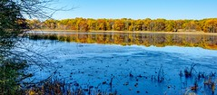 Thin Ice (Herculeus.) Tags: mi 2017 nov lake