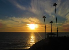 Shine on California (moonjazz) Tags: sunset california pacificocean photography best sky nature sun beautiful shine silhouette palms glow glory meditation light horizon amazing wonder highway1 pismobeach spectacular great gold dusk view looking sweetest adios farewell 3